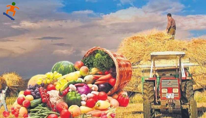 Türkiye tarım